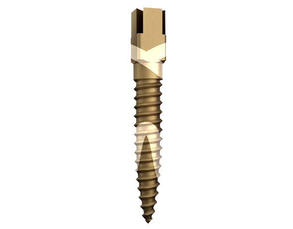 Product - DENTATUS GOLD 15 PCS