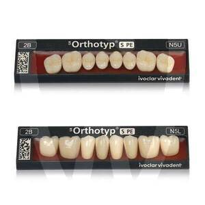 Product - SR ORTHOTYP S PE Posteriores