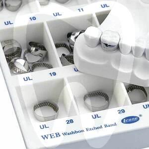 Product - WEB ANATOMICAL BANDS (PLAIN)