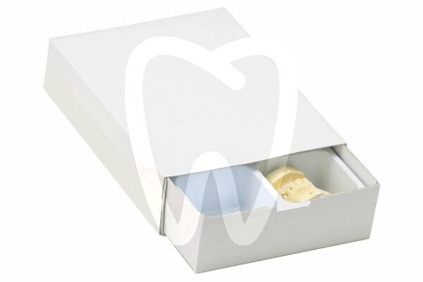 Product - HIGH 12MODEL BOX WITH PLASTIC CASE -HIGH