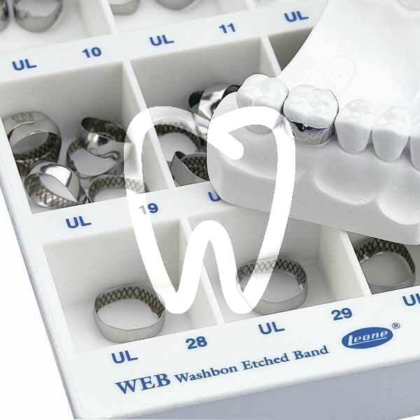 Product - BANDES ANATOMIQUES WEB (LISSES)