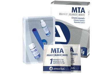Product - CIMENT REPARATEUR MTA BLANC OU GRIS (1GR)