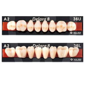 Product - Denti Posteriori Delara